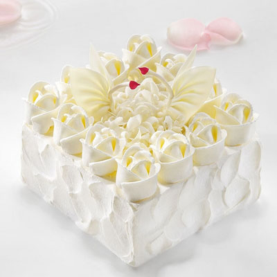 洪雅黑天鹅蛋糕:黑天鹅 天使之爱