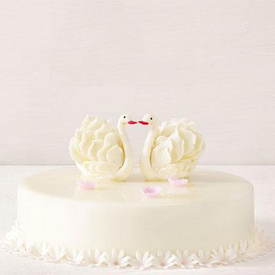 友谊黑天鹅蛋糕:黑天鹅 美丽人生
