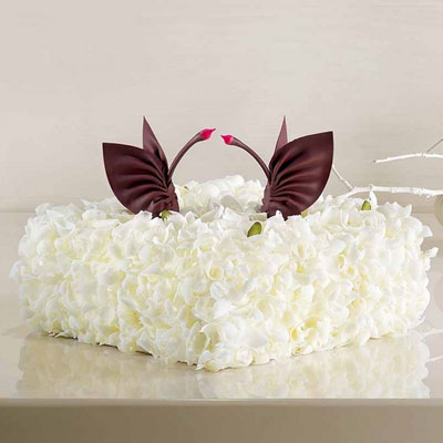 友谊黑天鹅蛋糕:黑天鹅 至美